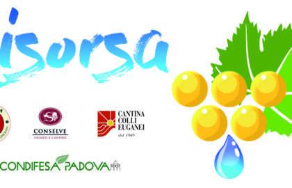 Logo Progetto RISORSA