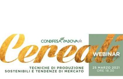 Banner-Webinar-Condifesa_DEF_