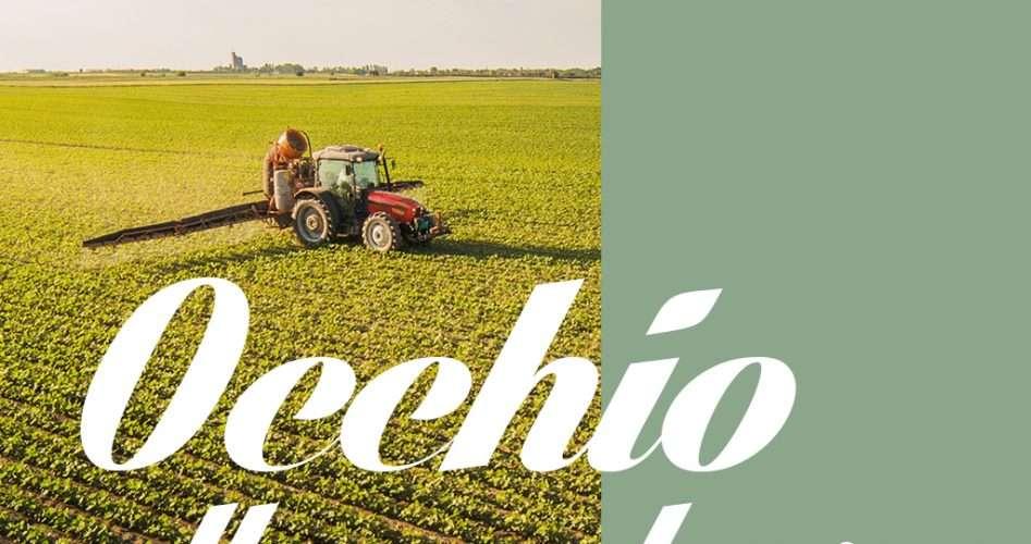 Assicurare colture permanenti e a ciclo primaverile